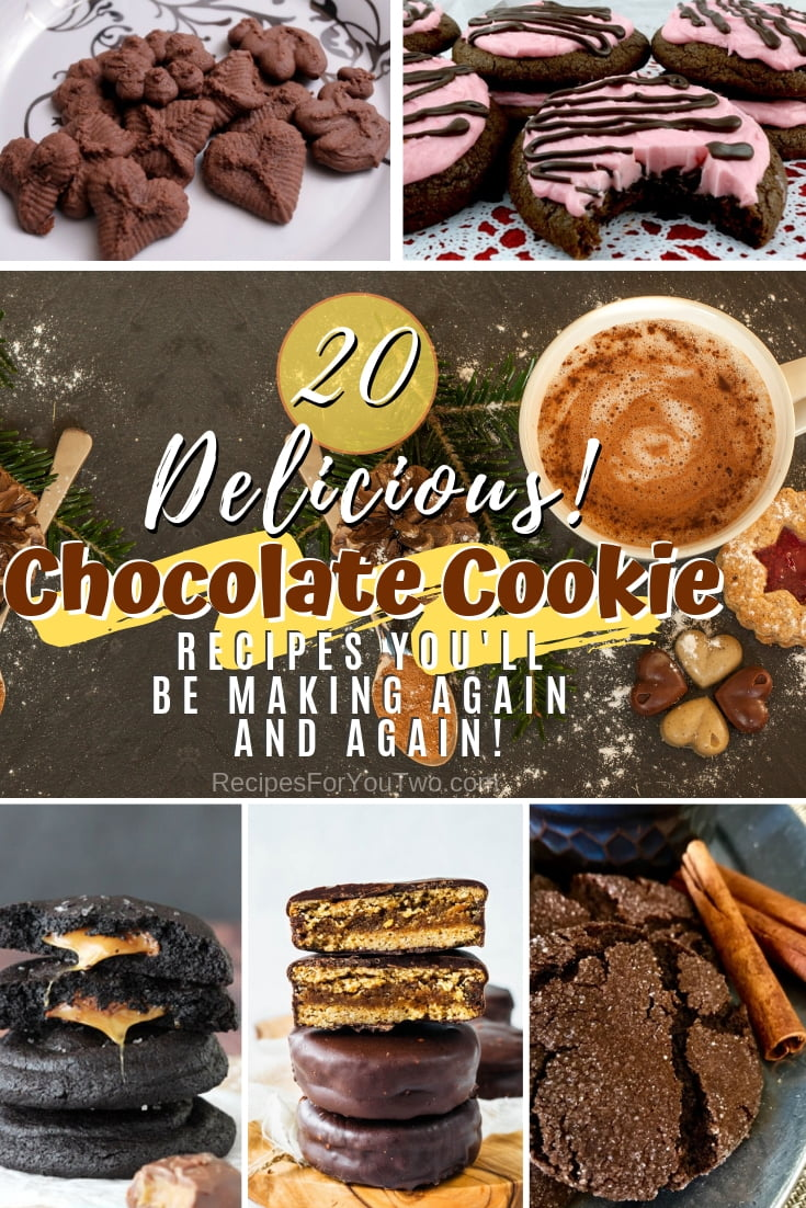 Make the classic chocolate cookie recipe even better with these brilliant new recipes! Great list! #recipe #dessert #chocolate #cookies