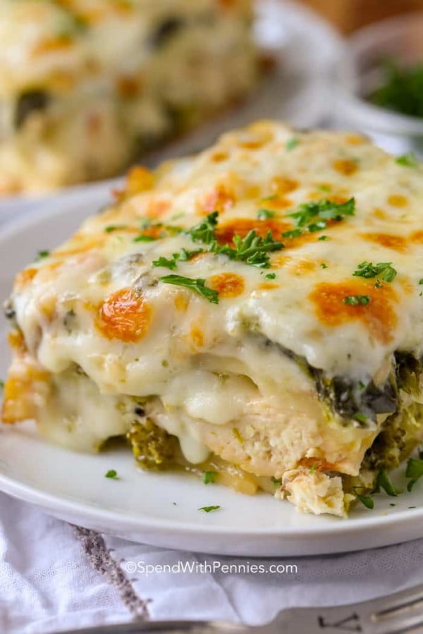 Chicken Lasagna #lasagna #dinner #food #recipe